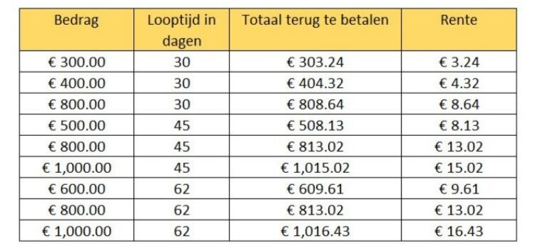 Kosten Minilening aanbieders